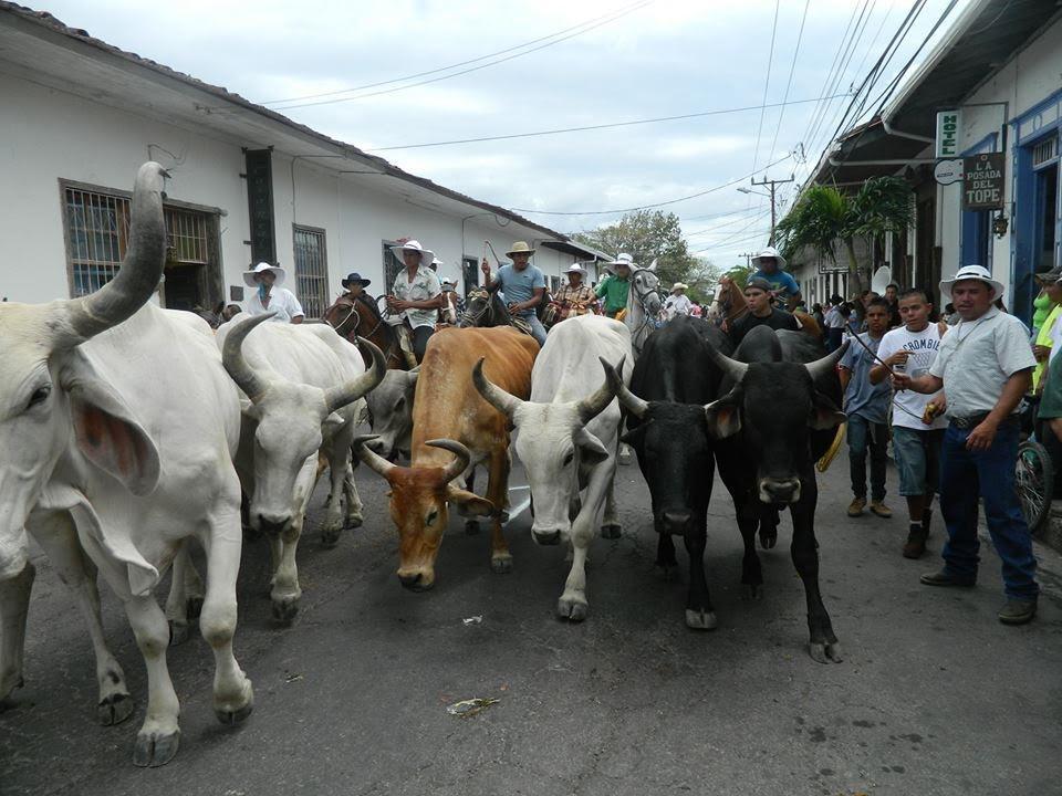 liberia-el-tope