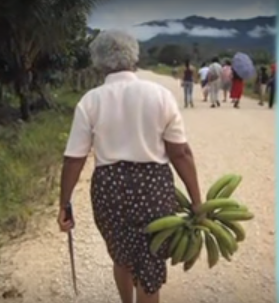 bananas-rede-mujeres