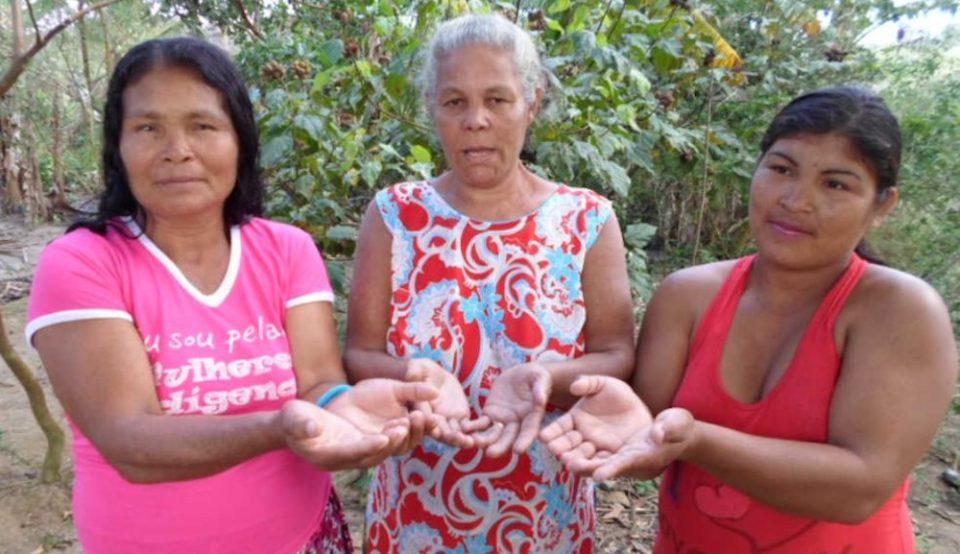 thydewa-mulheres-indigenas